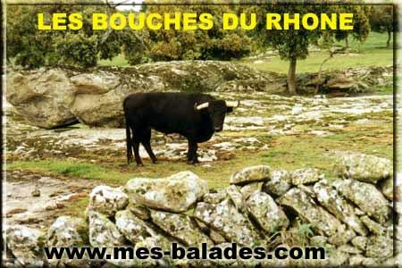 Decouverte des bouches du rhone 13 for Bouches du rhone 13