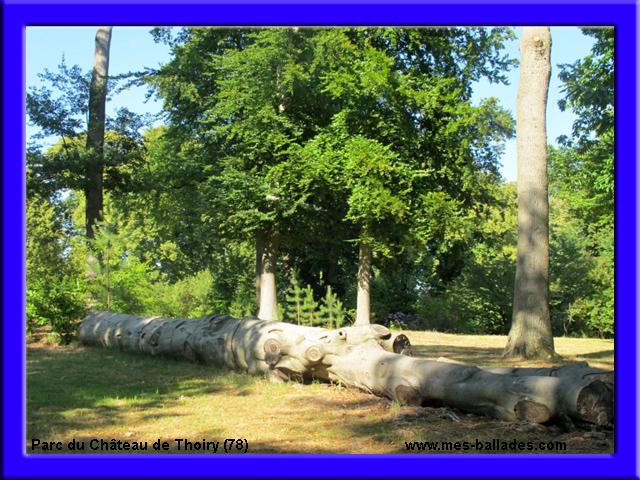 Le chateau de thoiry en yvelines 78770 for Parc des yvelines